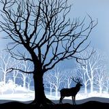 Het boslandschap van de sneeuwwinter met deers. Abstracte illustratie van de winterbos. stock illustratie