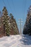 Het boslandschap van de winter met lijn met hoog voltage stock afbeelding
