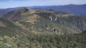 Het Boslandschap van Hubeishennongjia stock videobeelden