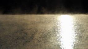 Het bosmeer is behandeld met een gouden zonweg en een nevel in de zomer stock video