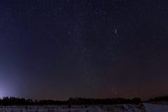 Het bospanorama van de hemelster Stock Foto