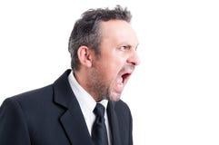 Het boze beklemtoonde bedrijfsmens schreeuwen stock foto's