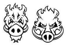 Het boze karakter van everzwijnhoofden Royalty-vrije Stock Afbeelding