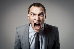 Het boze zakenman schreeuwen Royalty-vrije Stock Fotografie