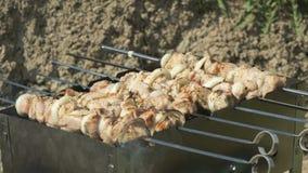 Het braden van gemarineerd vlees op metaalvleespennen op steenkolen stock video
