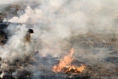 Het in brand steken op het Gebied Royalty-vrije Stock Fotografie