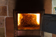 Het branden in de ovenkorrels van pijnboom Royalty-vrije Stock Afbeeldingen