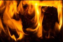Het branden in de ovenkorrels van pijnboom Stock Fotografie