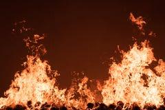 Het branden van de brand Royalty-vrije Stock Fotografie