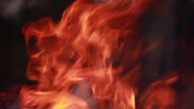 Het branden van de brand Sluit omhoog van vlammen stock video