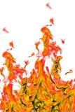 Het branden van de brand Textuur van brand, vlam op een donkere achtergrond Hete vlam van rood-gele kleur Geïsoleerd op wit Royalty-vrije Stock Foto's