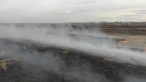 Het branden van droog gras op het gebied Ramp en noodsituatiegebeurtenissen, negatief gevolg op aard stock videobeelden