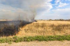 Het branden van het gras van vorig jaar op het gebied Royalty-vrije Stock Foto's
