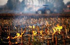 Het branden van het land stock afbeelding