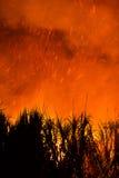 Het branden van het suikerriet Stock Foto's