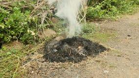 Het branden van werfafval, brandend vuilnis, brandwondgras stock video
