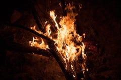 Het branden vuurnacht Stock Afbeelding