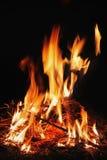Het brandhout brandt rode vlam Stock Afbeelding