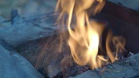 Het brandhout tijdens het verwarmen van openlucht smeedt oven stock footage