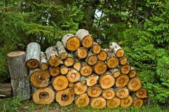 Het Brandhout van het kamp Stock Fotografie