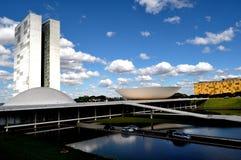 Het Braziliaanse congres Stock Afbeelding