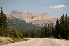 Het Brede rijweg met mooi aangelegd landschap van Icefield, Alberta, Canada Stock Fotografie