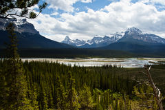Het Brede rijweg met mooi aangelegd landschap van Icefields Royalty-vrije Stock Foto's