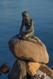 Het bronsstandbeeld van de Kleine Meermin, Kopenhagen, Denemarken Stock Afbeelding