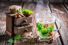 Het brouwen van groene thee met kaneel stock afbeeldingen