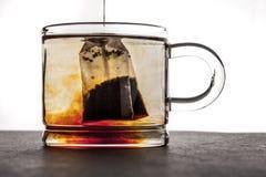 Het brouwen van thee in de transparante kop Stock Fotografie