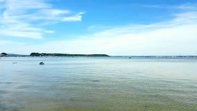 Het Brownseaeiland is grootst van de eilanden in Poole-Haven in de provincie van Dorset, Stock Foto's