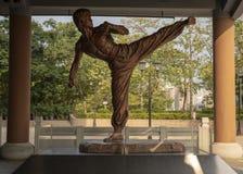 Het Bruce Lee-standbeeld stock afbeeldingen