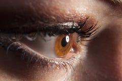 Het bruine oog dat van de vrouw `s in duisternis piept royalty-vrije stock afbeelding
