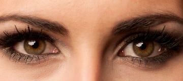 Het bruine oog van de vrouw met pastelkleurmake-up Stock Foto's