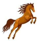 Het bruine Paard springen Royalty-vrije Stock Afbeelding