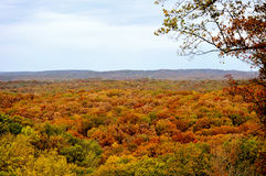 Het bruine Park van de Staat van de Provincie Royalty-vrije Stock Foto's