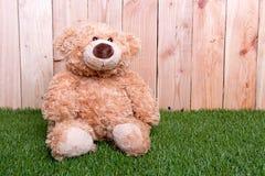 Het bruine stuk speelgoed draagt op groen gras Stock Foto's