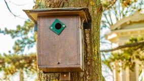 Het bruine vogelhuis hangen op een boomstam van een boom met een vage achtergrond stock afbeelding