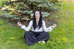 Het brunette op groen gras in yoga stelt Royalty-vrije Stock Fotografie
