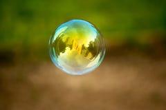 Het buble vliegen van de zeep Stock Fotografie