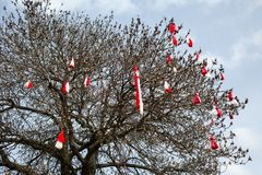 Het Bulgaarse traditionele teken Martenitsa van de douanelente op de boom Royalty-vrije Stock Fotografie