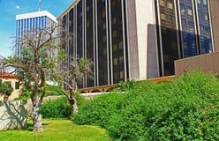 Het Bureaugebouwen van Tucson zoals die van een Park worden gezien royalty-vrije stock foto's