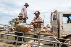 Het Cambodjaanse arbeiderswerk in Sihanoukville, Kambodja Stock Afbeeldingen