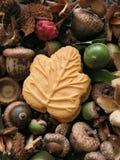 Het Canadese koekje van het esdoornblad op bed van de herfstnoten, vruchten, en zaden Stock Foto's