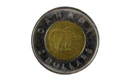 Het Canadese Muntstuk van het Twee Dollarmetaal draagt Kant Royalty-vrije Stock Foto