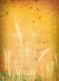 Het canvas van de zomer Stock Afbeelding