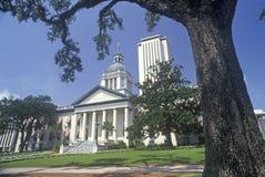 Het Capitool van de staat van Florida, Stock Afbeelding
