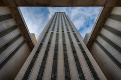 Het Capitool van de Staat van Florida Royalty-vrije Stock Foto's