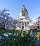 Het Capitool van de Staat van Washington in de Lente stock fotografie