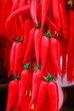 Het capsicum van het Chinese nieuwe jaar Royalty-vrije Stock Afbeelding